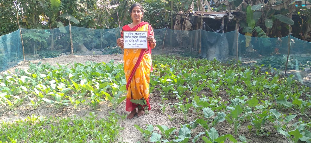 Mukti Mcdf Members Of Hingalganj Branch Grew Organic Vegetab...