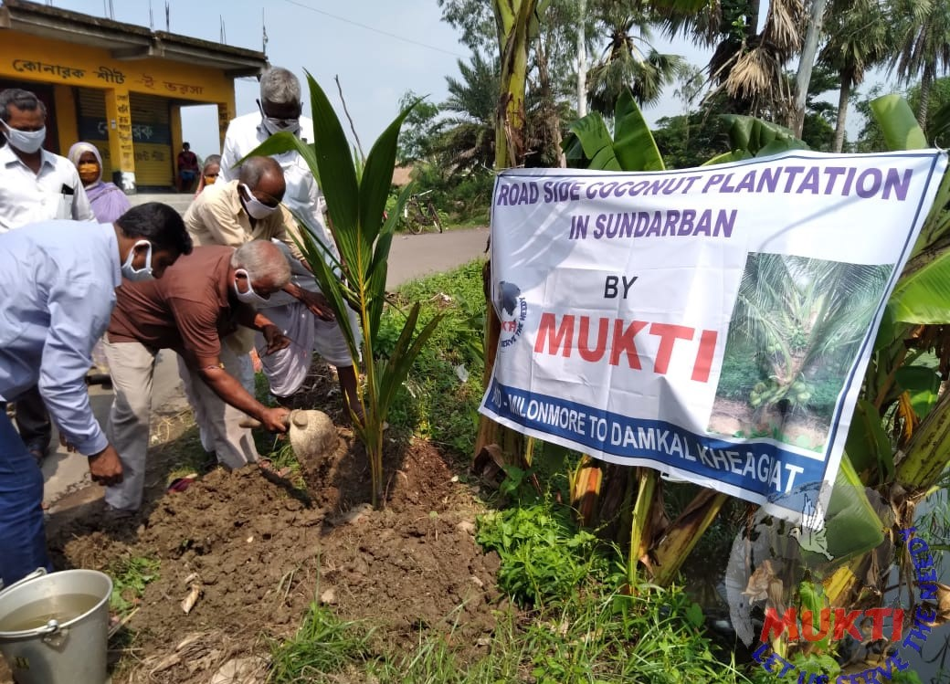 Mukti Planting 6000 Coconut And Flower Saplings Beside The R...