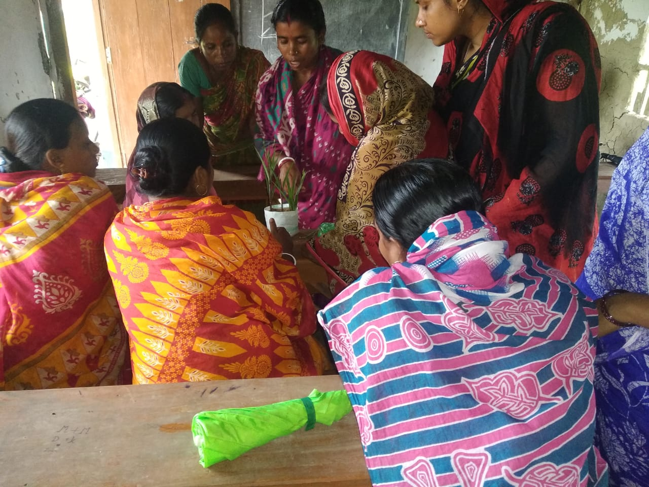 Mukti Horticulturalist And Trainer Mrs. Kabita Mondal Is Training The Trainees On Grafting And Cutting