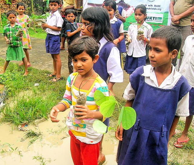 Donate Flower and Fruits Plants to 5 Families for their Garden